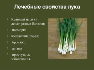 Лечебные свойства лука Кашицей из лука лечат разные болезни: насморк; воспале