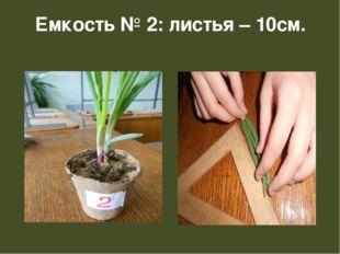 Емкость № 2: листья – 10см.