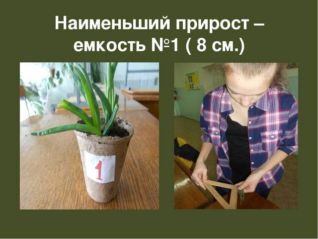 Наименьший прирост – емкость №1 ( 8 см.)