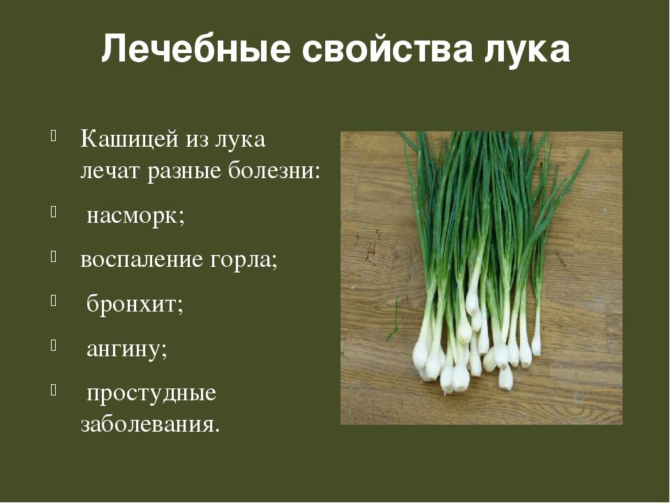 Лечебные свойства лука Кашицей из лука лечат разные болезни: насморк; воспале...