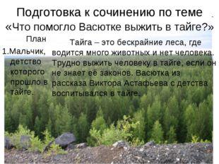 Подготовка к сочинению по теме «Что помогло Васютке выжить в тайге?» План 1.М