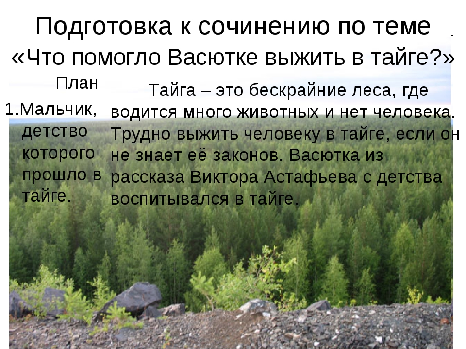 Подготовка к сочинению по теме «Что помогло Васютке выжить в тайге?» План 1.М...