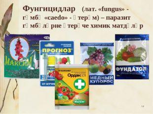 * Фунгицидлар (лат. «fungus» - гөмбә «caedo» - үтерәм)– паразит гөмбәләрне