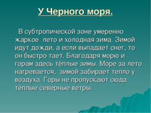 У Черного моря. В субтропической зоне умеренно жаркое лето и холодная зима. З