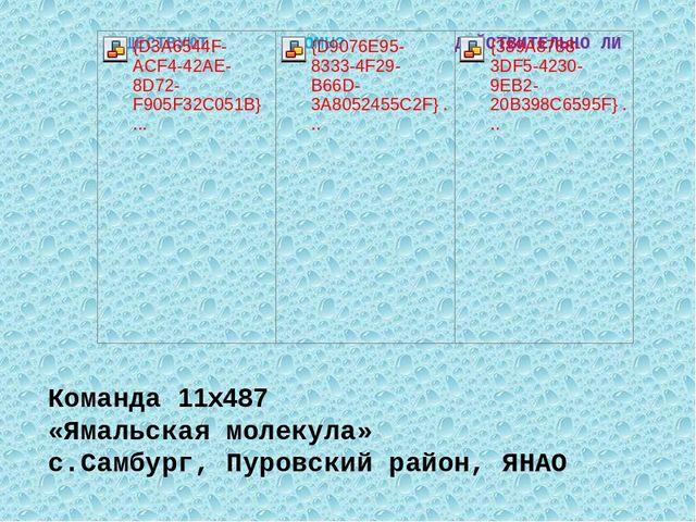 Команда 11x487 «Ямальская молекула» с.Самбург, Пуровский район, ЯНАО