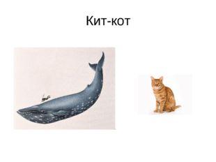 Кит-кот