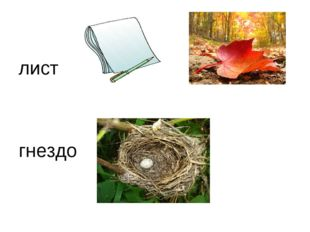 лист гнездо
