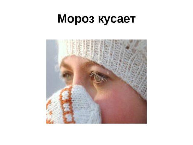 Мороз кусает