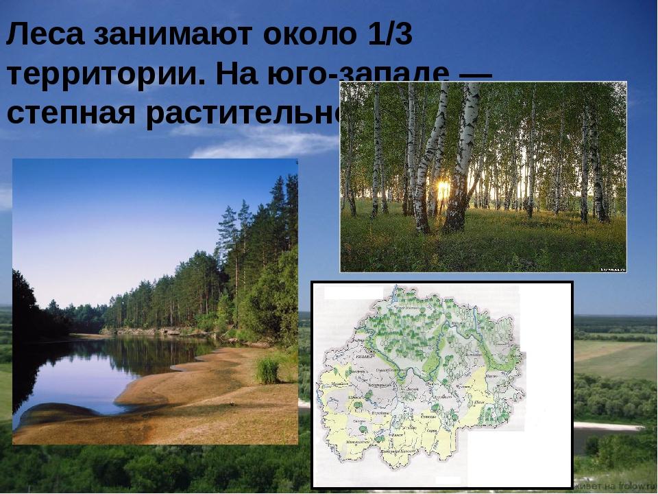 Леса занимают около 1/3 территории. На юго-западе — степная растительность.