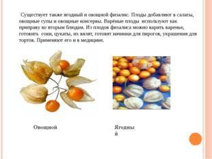 Существует также ягодный и овощной физалис. Плоды добавляют в салаты, овощны
