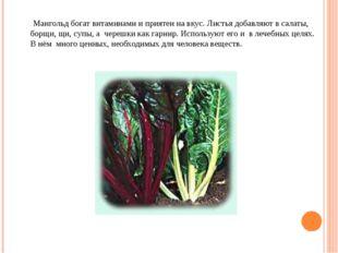 Мангольд богат витаминами и приятен на вкус. Листья добавляют в салаты, борщ