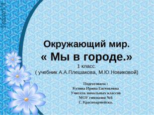 Окружающий мир. « Мы в городе.» 1 класс. ( учебник А.А.Плешакова, М.Ю.Новиков