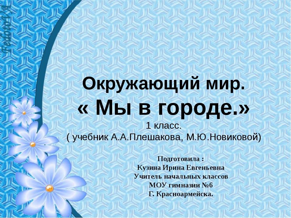 Окружающий мир. « Мы в городе.» 1 класс. ( учебник А.А.Плешакова, М.Ю.Новиков...