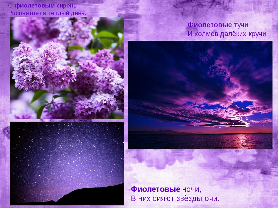 Сфиолетовымсирень Расцветает в тёплый день. Фиолетовые ночи, В них сияют зв...