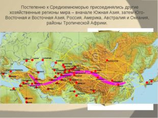 Постепенно к Средиземноморью присоединялись другие хозяйственные регионы мира
