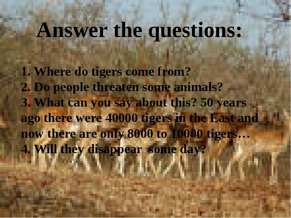 1. Where do tigers come from? 2. Do people threaten some animals? 3. What can...