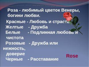 Красные - Любовь и страсть Желтые - Дружба Белые - Подлинная любовь и чистота