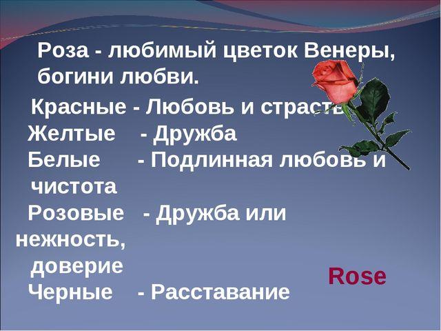 Красные - Любовь и страсть Желтые - Дружба Белые - Подлинная любовь и чистота...