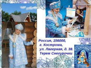 Россия, 156000, г. Кострома, ул. Лагерная, д. 38. Терем Снегурочки
