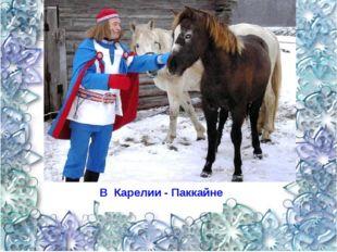 В Карелии - Паккайне