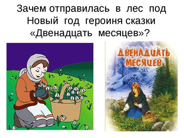 Зачем отправилась в лес под Новый год героиня сказки «Двенадцать месяцев»?