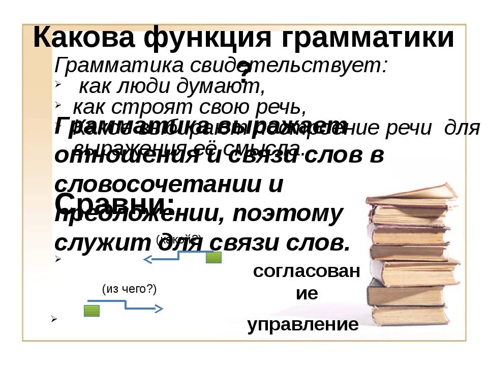Какова функция грамматики ? Сравни: Грамматика свидетельствует: как люди дума...