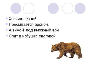 Хозяин лесной Просыпается весной, А зимой под вьюжный вой Спит в избушке снег