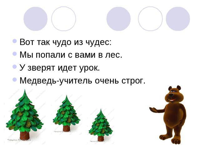 Вот так чудо из чудес: Мы попали с вами в лес. У зверят идет урок. Медведь-уч...