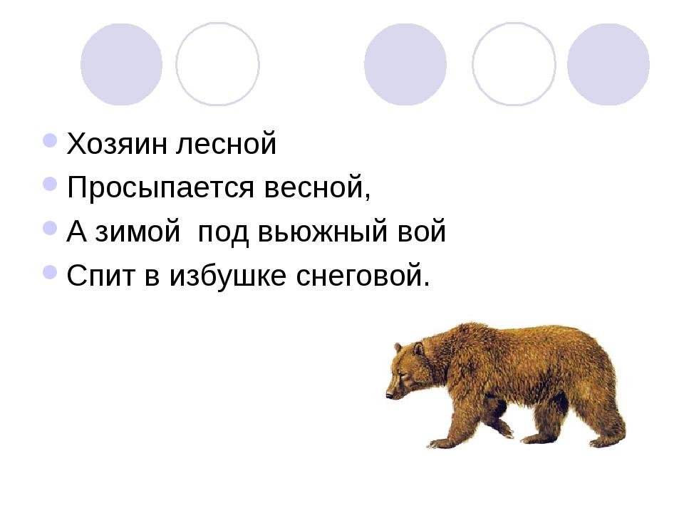 Хозяин лесной Просыпается весной, А зимой под вьюжный вой Спит в избушке снег...