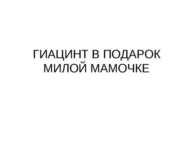 ГИАЦИНТ В ПОДАРОК МИЛОЙ МАМОЧКЕ