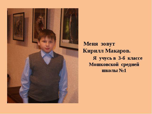 Меня зовут Кирилл Макаров. Я учусь в 3-б классе Мошковской средней школы №1