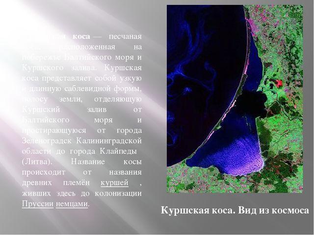 Ку́ршская коса́— песчаная коса, расположенная на побережье Балтийского моря и...