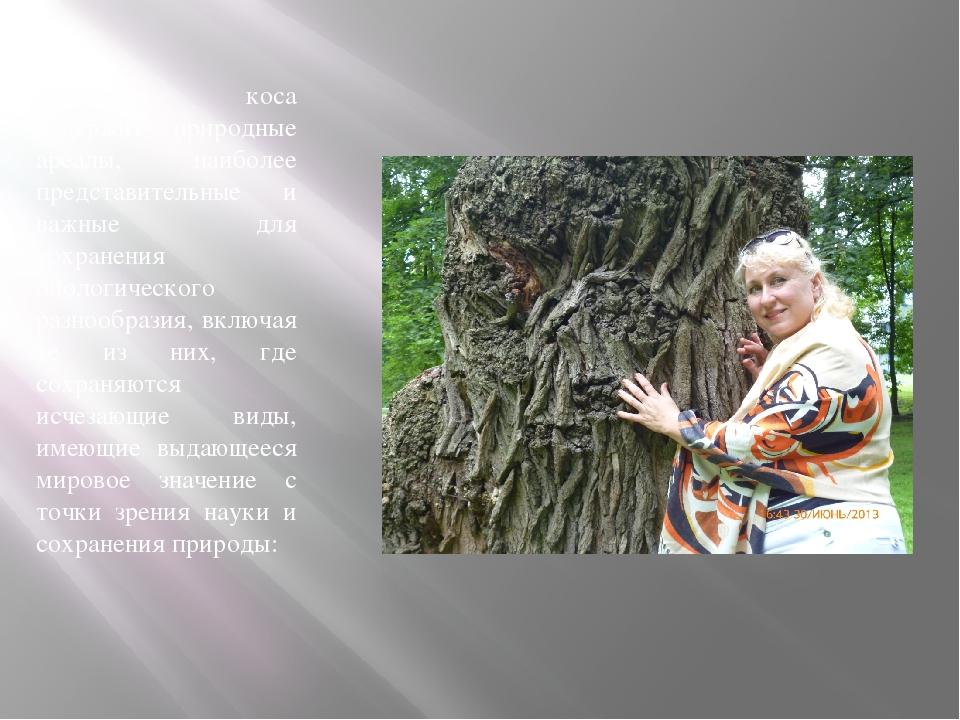 Куршская коса содержит природные ареалы, наиболее представительные и важные д...