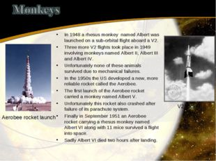 In 1948 a rhesus monkey named Albert was launched on a sub-orbital flight abo