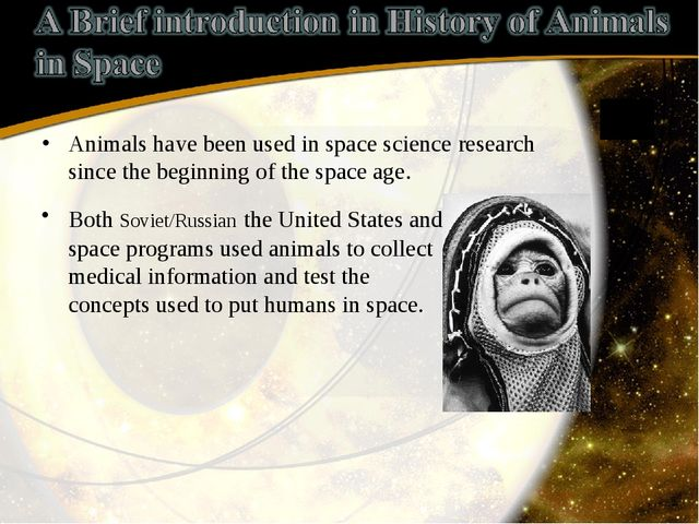 Animals have been used in space science research since the beginning of the s...