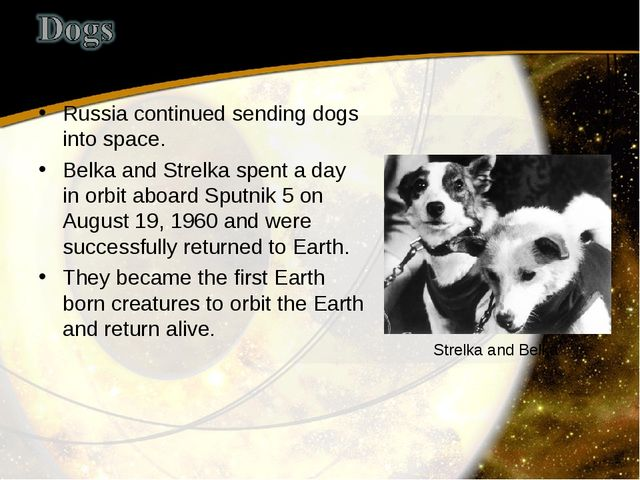 Russia continued sending dogs into space. Belka and Strelka spent a day in or...