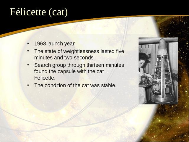 Félicette (cat) 1963 launch year The state of weightlessness lasted five minu...