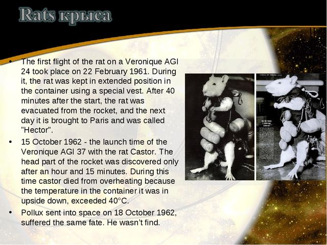 The first flight of the rat on a Veronique AGI 24 took place on 22 February 1...