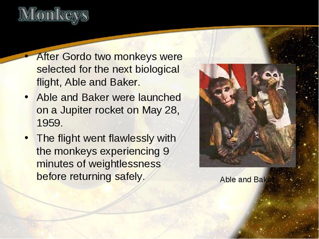 After Gordo two monkeys were selected for the next biological flight, Able an...