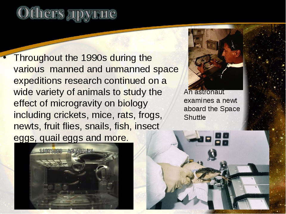 Throughout the 1990s during the various manned and unmanned space expeditions...