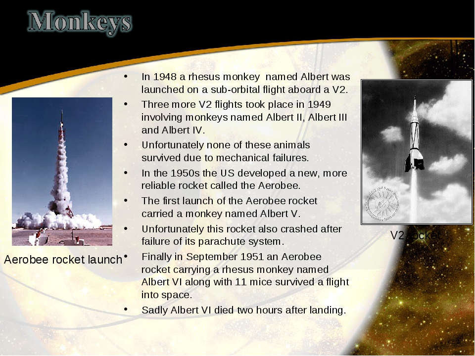 In 1948 a rhesus monkey named Albert was launched on a sub-orbital flight abo...