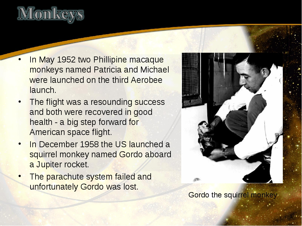 In May 1952 two Phillipine macaque monkeys named Patricia and Michael were la...
