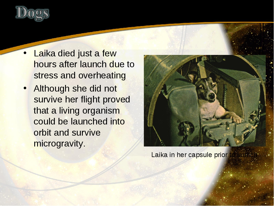 Laika died just a few hours after launch due to stress and overheating Althou...