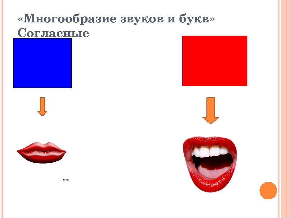 Обозначения гласных и согласных звуков картинки