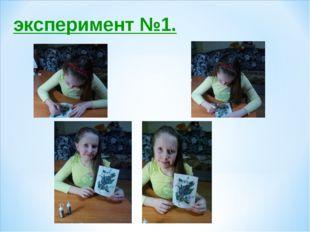 эксперимент №1.