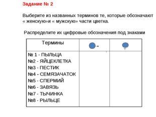 Задание № 2 Выберите из названных терминов те, которые обозначают « женскую»и