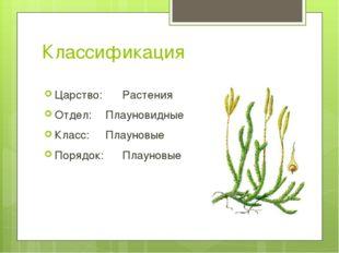 Классификация Царство: Растения Отдел: Плауновидные Класс: Плауновые Поряд