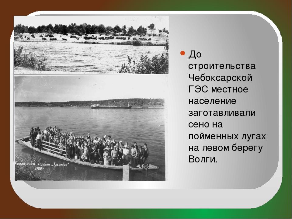 До строительства Чебоксарской ГЭС местное население заготавливали сено на по...