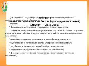 П Р О Е К Т Летняя математическая школа (для одаренных детей)   «Эрудит –   2