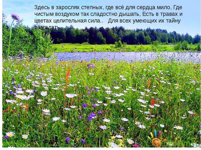 Здесь в зарослях степных, где всё для сердца мило, Где чистым воздухом так с...